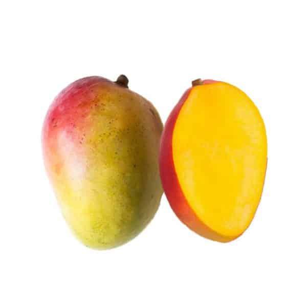 انبه میوه استوایی - انبه آفریقایی