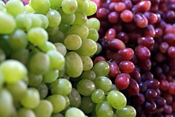 انگور ، میوه های تابستان