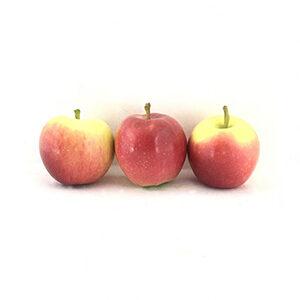 سیب مدرسه ای