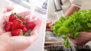 شستشو میوه و سبزیجات