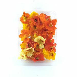 خرید آنلاین گل خوراکی لادن - خرید گل خوراکی لادن
