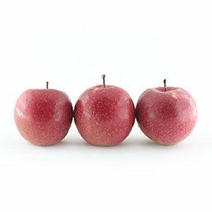 سیب شمرون