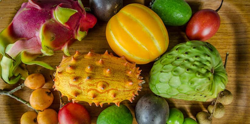 میوه های استوایی عجیب دنیا