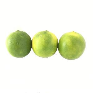 خرید آنلاین لیمو شیرین