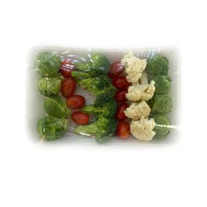 خرید مخلوط سبزیجات - مخلوط سبزیجات