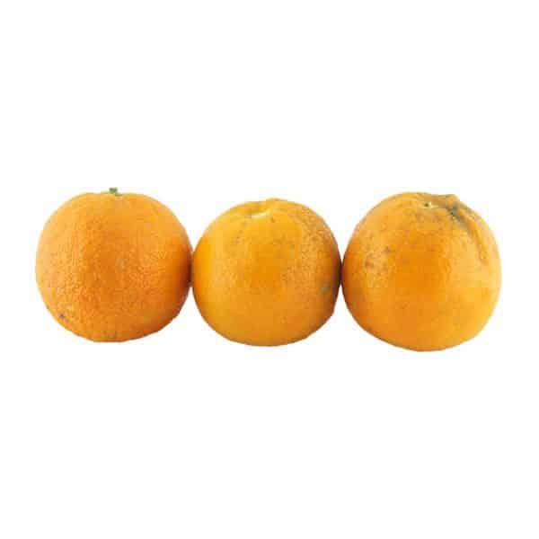 خرید آنلاین نارنج - خرید نارنج