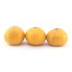 خرید نارنگی شمال