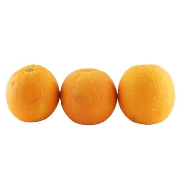 قیمت پرتقال تامسون جنوب