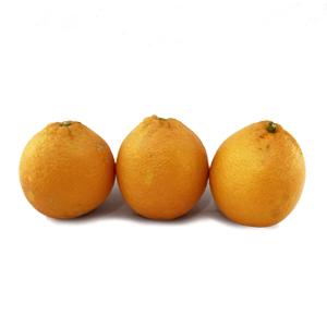 خرید آنلاین پرتقال خونی جنوب- خرید اینترنتی پرتقال خونی