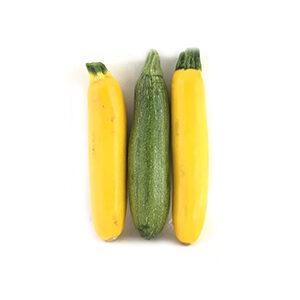 خرید آنلاین کدو قلمی رنگی ارگانیک - خرید کدو قلمی رنگی ارگانیک
