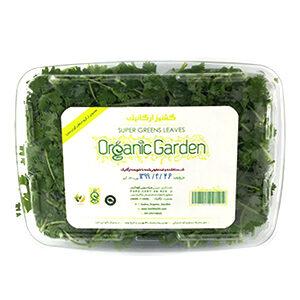 خرید سبزی ارگانیک ، خرید گشنیز ارگانیک
