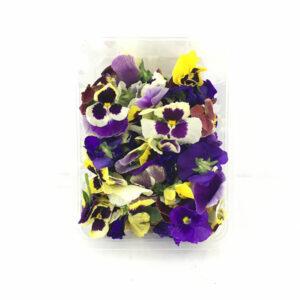 خرید آنلاین گل خوراکی بنفشه - خرید گل خوراکی بنفشه