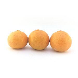 خرید نارنگی یافا